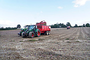Nederland, Groesbeek, 28-9-2018 Uien worden geoogst op een akker . Trekkers rijden bij elkaar om het landbouwproduct mechanisch binnen te halen. Foto: Flip Franssen