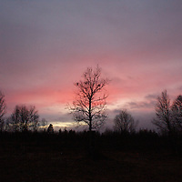 Hirvas Salmi, FINLAND. A pink dusk sweeps over the arctic landscape.