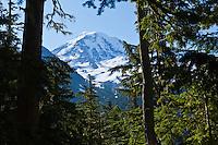 The Northwest side of Mount Rainier seen framed by trees, Mount Rainier National Park, Washington, USA.