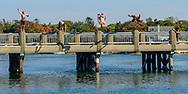 Kids Jumping off of Bridge, Southampton, NY