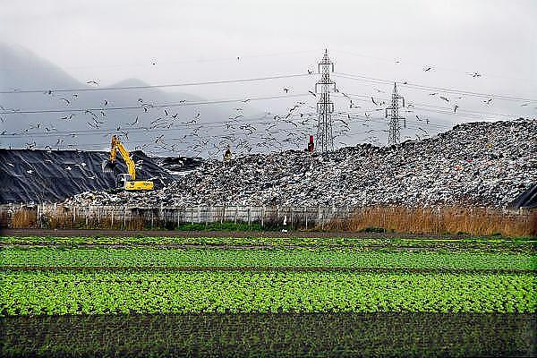 Italie, Acerra, 6-3-2008..Een van de talloze vuilstortplaatsen in de regio ten noorden van Napels. De stad weet met zijn afval geen raad meer en in het hele gebied liggen illegale hopen afval. Een nieuwe vuilverbrandingsoven is pas in 2009 bedrijfsklaar. Tot die tijd heeft de maffia, camorra grote invloed op de afvalverwerking van deze stad...Industrieel afval en huishoudelijk afval veroorzaken grote water en bodemvervuiling, terwijl de streek een belangrijk tuinbouwgebied is...Foto: Flip Franssen