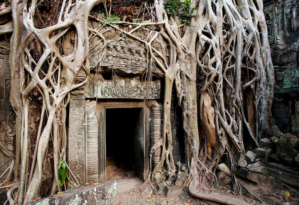 A small doorway overgrown by tree roots at Ta Prohm temple at Angkor, Siem Reap Province, Cambodia