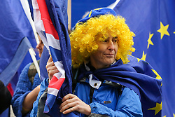 © Licensed to London News Pictures. 08/01/2020. London, UK. An anti-Brexit protester demonstrates outside Houses of Parliament ahead of BORIS JOHNSON'S meeting with President of the European Council URSULA VON DER LEYEN and MICHEL BARNIER, the EU chief negotiator later today. Photo credit: Dinendra Haria/LNP