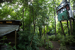 Sipson, UK. 5th June, 2018. A tree house is pictured at Grow Heathrow. Grow Heathrow is a squatted off-grid eco-community garden founded in 2010 on a previously derelict site close to Heathrow airport to rally support against government plans for a third runway and it has since made a significant educational and spiritual contribution to life in the Heathrow villages, which remain threatened by Heathrow airport expansion.