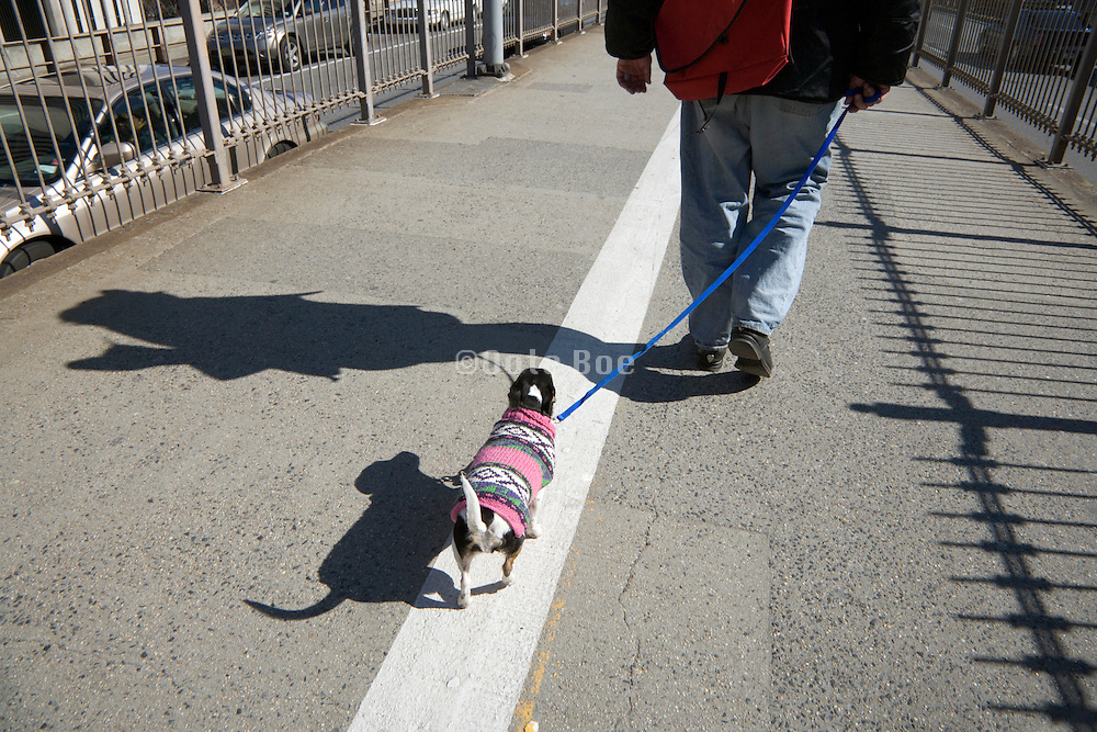 man walking with little dressed up dog, Brooklyn Bridge New York