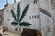 Mural of a  marijuana leaf on the side of the National Cemetery in Port-au-Prince, Haiti. Drugs in Haiti are the cause of much of the crime.