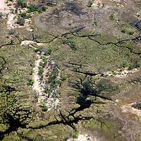 Africa, Botswana, Okavango Delta. Aerial view of Okavango Delta in October.