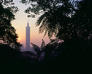 A view of Taipei and the new world's tallest building, called Taipei 101, from nearby Elephant Mountain, a popular hillside jungle path that rises above the city on a ridge resembling an elephant's back.