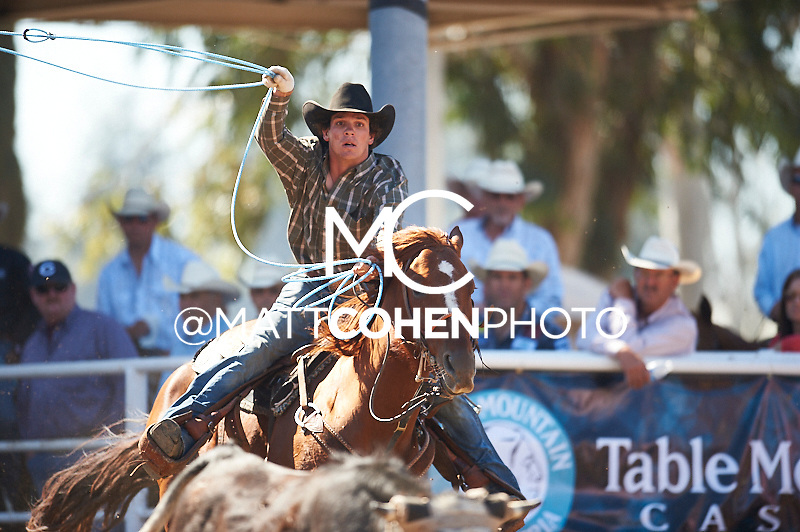 Team roper Zayne DIshion of Bishop, CA competes at the Clovis Rodeo in Clovis, CA.<br /> <br /> <br /> UNEDITED LOW-RES PREVIEW<br /> <br /> <br /> File shown may be an unedited low resolution version used as a proof only. All prints are 100% guaranteed for quality. Sizes 8x10+ come with a version for personal social media. I am currently not selling downloads for commercial/brand use.