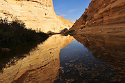 Israel, Negev, Ein Avdat natural water spring in Wadi Tzin