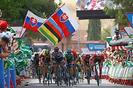 Arrival sprint, Peter Sagan (SVK - Bora - Hansgrohe), Alejandro Valverde (ESP - Movistar) green jersey, Giacomo Nizzolo (ITA - Trek - Segafredo), during the UCI World Tour, Tour of Spain (Vuelta) 2018, Stage 8, Linares - Almaden 195,1 km in Spain, on September 1st, 2018 - Photo Luca Bettini / BettiniPhoto / ProSportsImages / DPPI