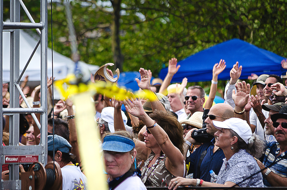 People in front of the stage at the Riverfront Blues Festival in Wilmington, DE enjoying the live blues performances.