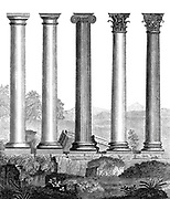 Copperplate engraving of a Comparative view of the Five Orders of Architecture From the Encyclopaedia Londinensis or, Universal dictionary of arts, sciences, and literature; Volume II;  Edited by Wilkes, John. Published in London in 1810