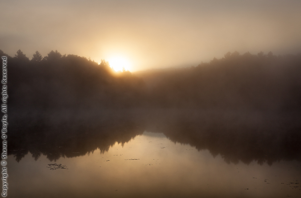 Muddy Pond at sunrise, Hinsdale, MA, at Source of East Branch of the Housatonic River