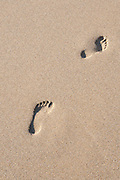 Footprints in sand from above