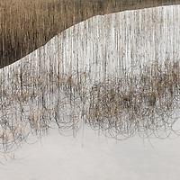 Reflections on Skye