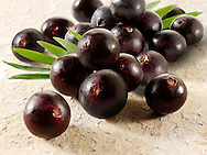 pictures, fotos & images of the acai berry the super fruit anti oxident from the Amazon. The acai berry has been associated with helping weight loss.
