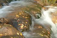 stream with autumn colors at Sundance, Utah USA
