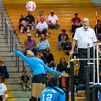 Hailey Martin, #3, elevates for a powerful spike against the Bengals Wednesday night at Gallup High School in Gallup.