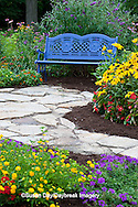 63821-21804 Blue bench and stone path in flower garden.  Black-eyed Susans (Rudbeckia hirta) Red Dragon Wing Begonias (Begonia x hybrida)  Homestead Purple Verbena (Verbena canadensis), Red Verbena, New Gold Lantana (Lantana camara) Butterfly Bushes, Zinnias, Marion Co., IL