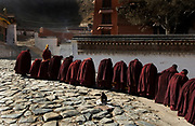 Buddhist monks wearing heavy maroon robes congregate outside the main prayer hall of Labrang Monastery, for Losar prayers, at Tibet's New Year.<br /> <br /> Each day during Losar thousands of pilgrims walk the kora around the monastery, which is lined with prayer wheels.<br /> <br /> Established in 1709, Labrang housed over 4000 monks at its peak, but now only has around 1500 monks.