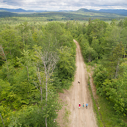 Exploring the new Bethel Community Forest in Bethel, Maine.