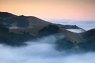 Coastal fog and rolling hills at dawn, in the rural countryside near Cambria, San Luis Obispo County, California