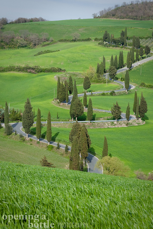 A winding road lined with cypress trees passing through the Val d'Orcia. Near Montichiello and Pienza, Tuscany, Italy.