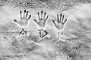 Hands impressions in snow,, April, Hurricane Ridge, Olympic National Park, Washington, USA