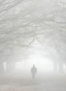 ©London News pictures...16/11/2010. Walkers enjoy the fog in Richmond Park in London today (Tues). Photo credit should read Stephen Simpson/London News Pictures.