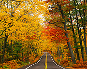 US 41 passing through canopy of northern hardwood forest at the peak of autumn color, Keweenaw Peninsula southwest of Copper Harbor, Upper Peninsusla of Michigan.
