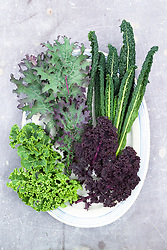 Kale on an oval plate against slate. Clockwise from bott left -  'Pentland Brig', 'Red Russian', 'Cavolo Nero', 'Red Bor'
