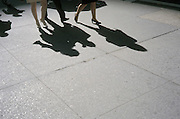 Shadow of people walking on the pavement