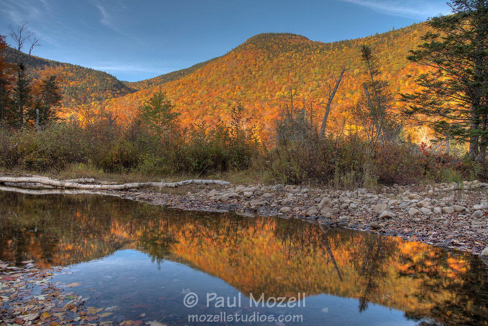 Autumn colors reflect the late afternoon sun in the Saco River