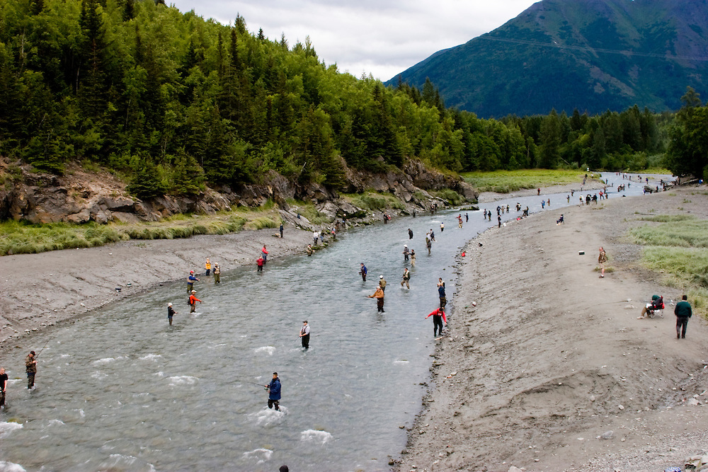 Nearly shoulder to shoulder it's low tide and mid week at bird creek, 25 minutes south of Anchorage Alaska.