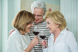 Friends drinking glass of wine, smiling