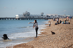 © Licensed to London News Pictures. 02/10/2016. Southsea, Hampshire, UK.  A woman throws a stone for her dog. People on Southsea Beach enjoying the warm, sunny weather on another stunning autumn day. Photo credit: Rob Arnold/LNP