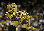 January 24, 2009; Baton Rouge, LA, USA; LSU Tigers dance team the Tiger Girls perform during a timeout in the second half as the Tigers faced the Xavier Musketeers at the Pete Maravich Assembly Center in Baton Rouge. Xavier defeated LSU 80-70. Mandatory Credit: Crystal LoGiudice-US PRESSWIRE ..