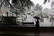 Man with umbrella walks past snow covered graveyard, Hampstead, London, United Kingdom