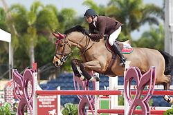 Gredley Tim (GBR) - Omelli<br /> Horseware GP CSI 2*<br /> Wellington 2012<br /> © Hippo Foto - Cealy Tetly