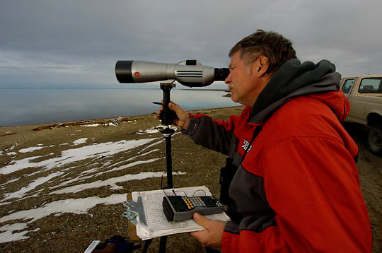 Biologists with the USF&W doing a polar bear survey along the coast of the Beaufort Sea, Alaska.