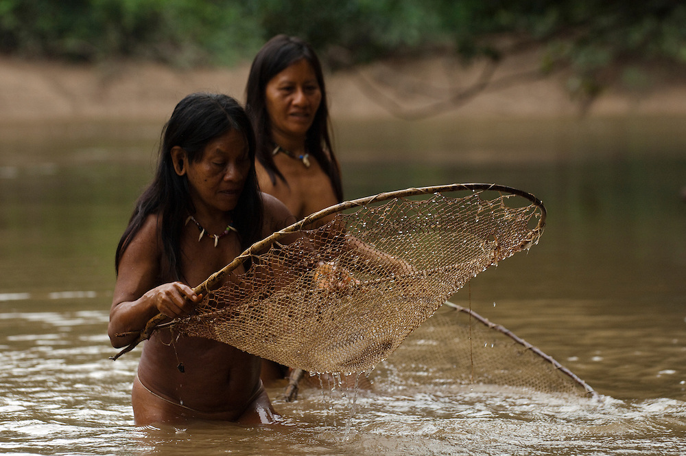 Huaorani Indians Ewa Kemperi and Awame Gomoke fishing with home made nets. The nets are made from chambira palm fibres.<br /> Bameno Community. Yasuni National Park.<br /> Amazon rainforest, ECUADOR.  South America<br /> This Indian tribe were basically uncontacted until 1956 when missionaries from the Summer Institute of Linguistics made contact with them. However there are still some groups from the tribe that remain uncontacted.  They are known as the Tagaeri & Taromenane. Traditionally these Indians were very hostile and killed many people who tried to enter into their territory. Their territory is in the Yasuni National Park which is now also being exploited for oil.