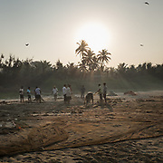 Fishermen gather at sunrise to collect fish from their nets.