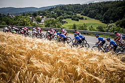 Peloton during Stage 2 of 24th Tour of Slovenia 2017 / Tour de Slovenie from Ljubljana to Ljubljana (169,9 km) cycling race on June 16, 2017 in Slovenia. Photo by Vid Ponikvar / Sportida
