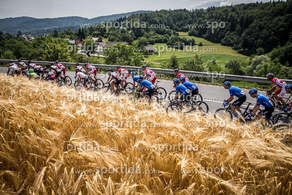 Peloton during Stage 2 of 24th Tour of Slovenia 2017 / Tour de Slovenie from Ljubljana to Ljubljana (169,9 km) cycling race on June 16, 2017 in Slovenia. Photo by Vid Ponikvar / Sportida