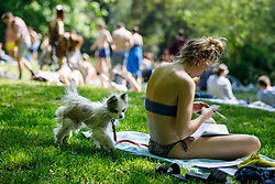 © Licensed to London News Pictures. 06/05/2018. London, UK. A puppy plays in Hampstead Heath Park in north London as temperatures hit 27C on Sunday, May 6, 2018. Photo credit: Tolga Akmen/LNP
