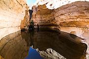 Israel, Negev Desert, Ein Avdat (or Ein Ovdat) nature water pool at the desert oasis