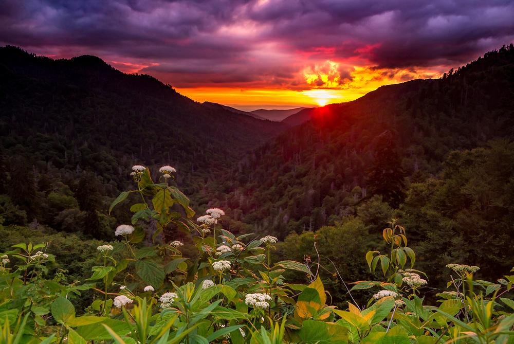 Smoky Mountains Morton Overlook