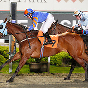 Bennelong and Paige Bolton winning the 6.00