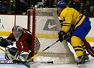Erik Andersson (SWE) bringt den Puck nicht an Daniel Larsson (SWE) vorbei © Thomas Oswald
